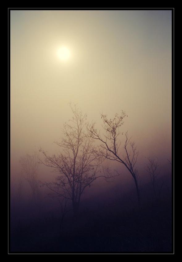 A piece of fine art art photography titled Under the Same Sun by Mihaela Gradinaru