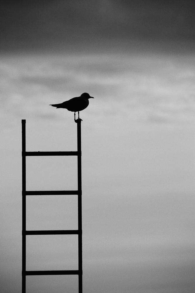 Keep your balance.
