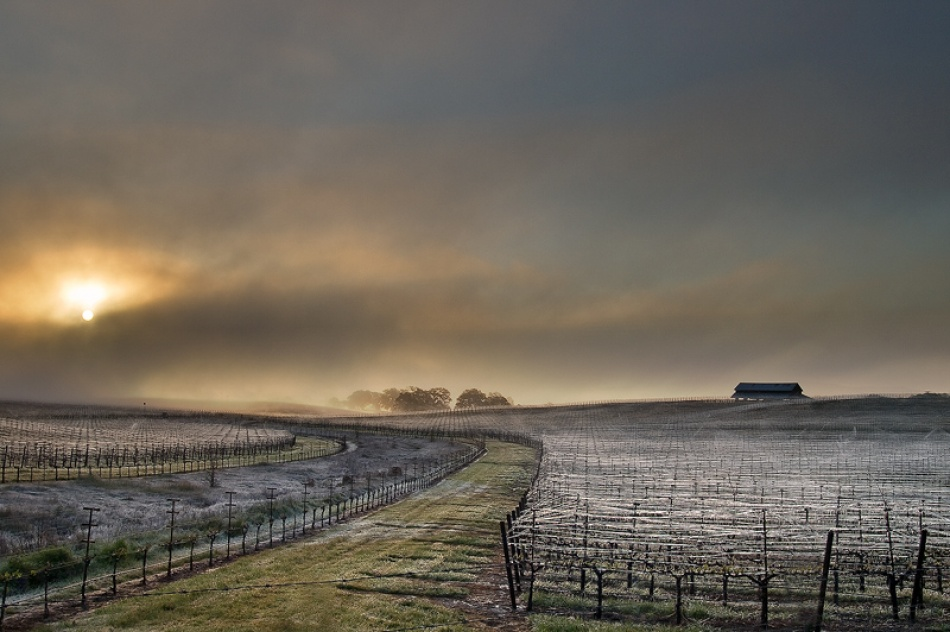 A piece of fine art art photography titled Of Fog and Frost by jtangen
