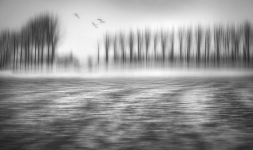 A piece of fine art art photography titled A Winter Day by Marc Apers
