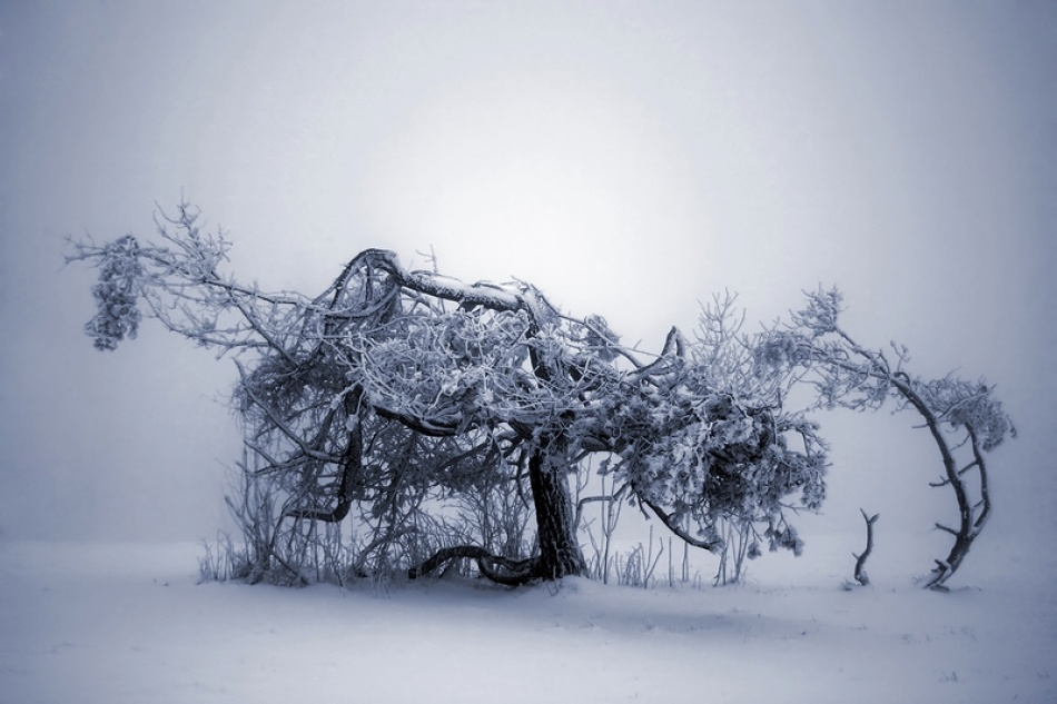 A piece of fine art art photography titled Nowhere by Ralf Greiner
