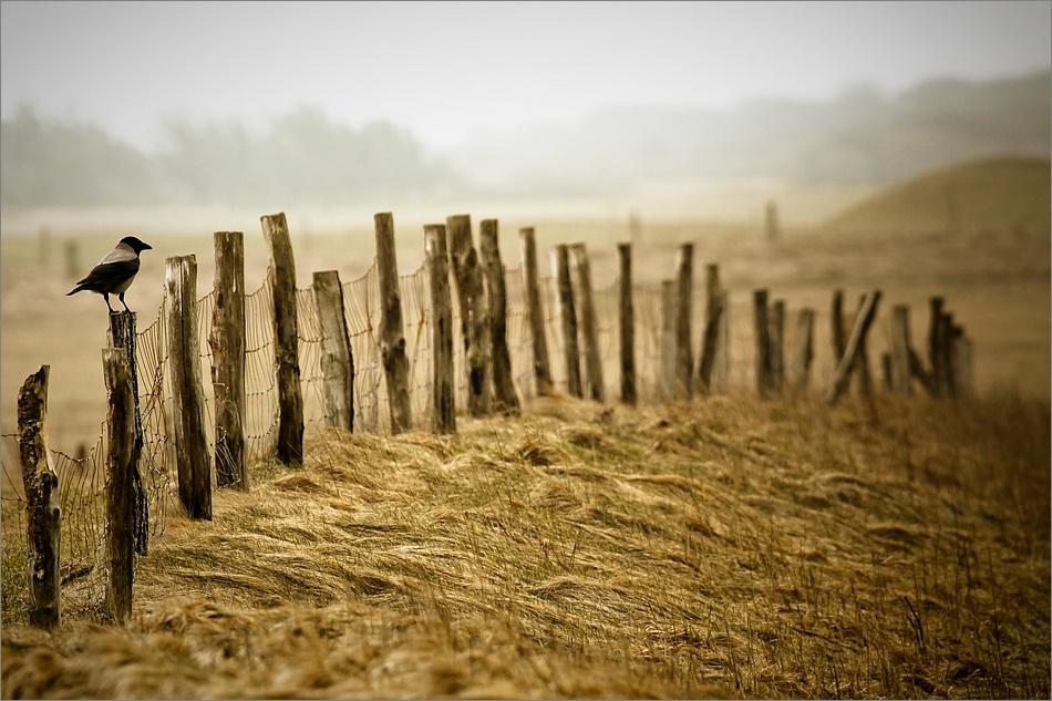 A piece of fine art art photography titled Lønstrup by Patrick Frauchiger