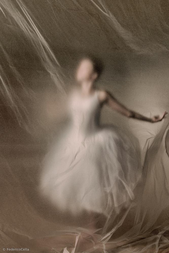 Portrait of Dance 6