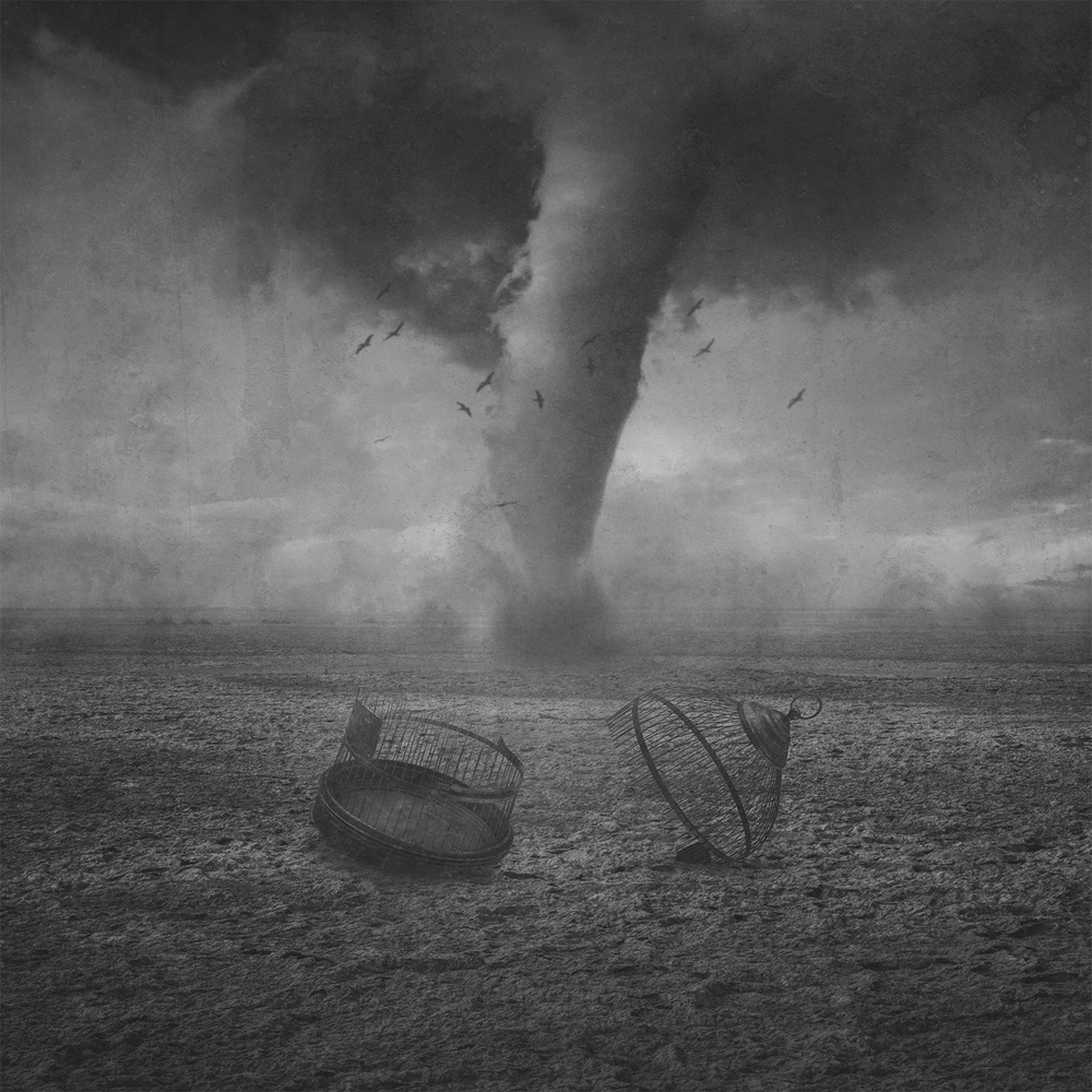 View this piece of fine art photography titled Freedom Storm by Mohammad Rasool Fahmani