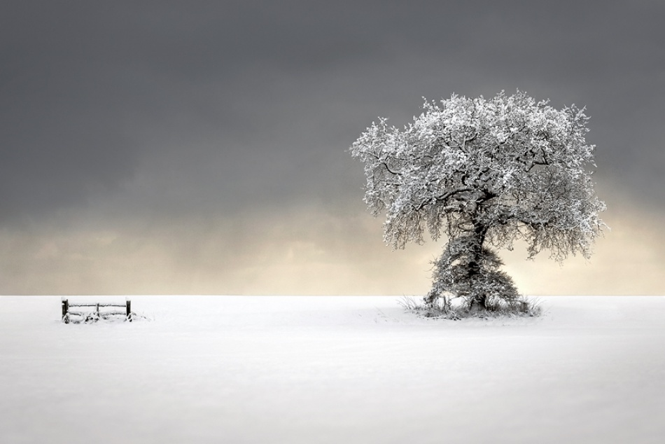 A piece of fine art art photography titled Winters Picnic by Liam Frankland