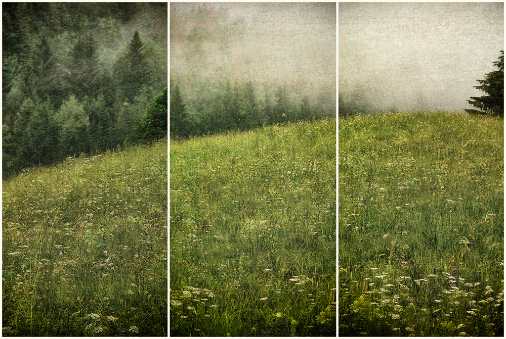 A piece of fine art art photography titled Untitled by Krisztina Lacz
