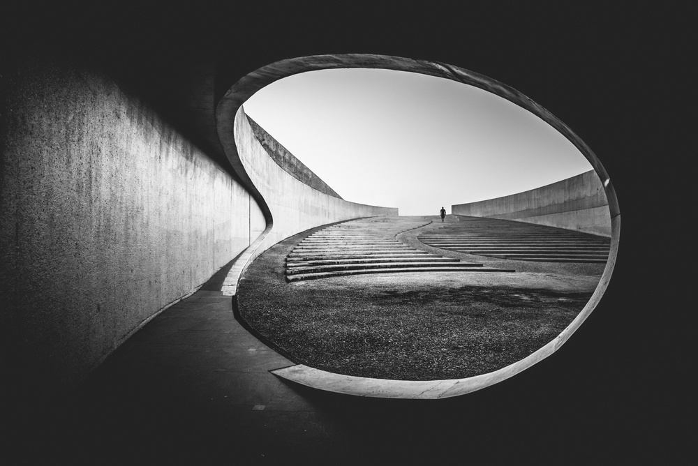 A piece of fine art art photography titled The Search by Christophe Staelens
