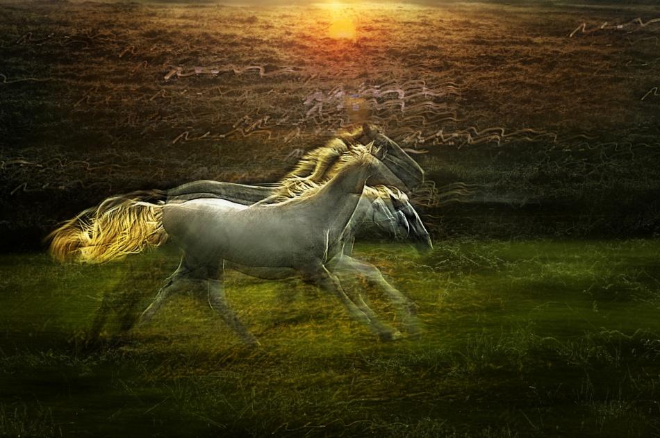 A piece of fine art art photography titled Dreamy Way by milan malovrh