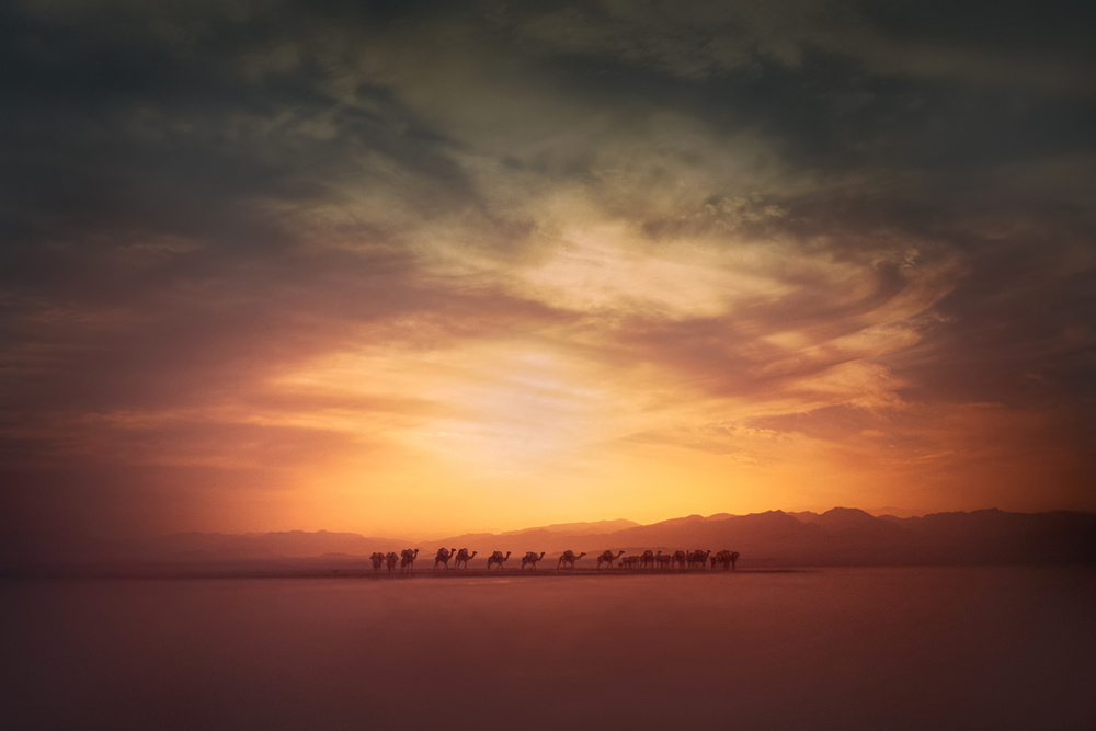 A piece of fine art art photography titled Going Home by Pia Jessen