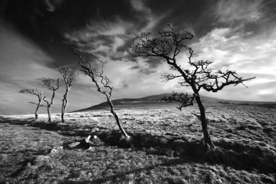 A piece of fine art art photography titled Wind & Wuthering by Northline