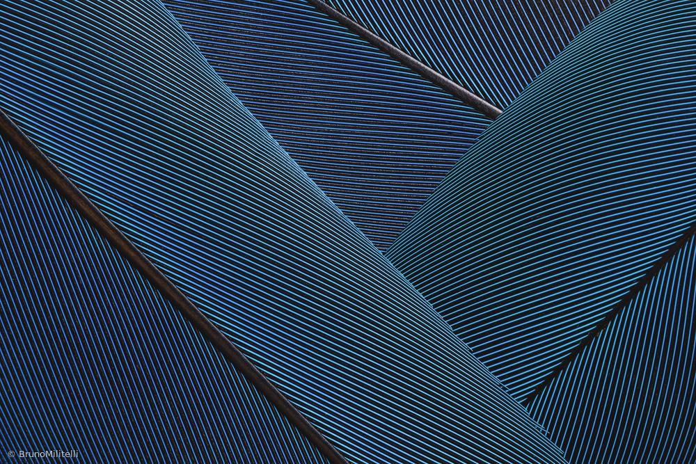 Native Blue