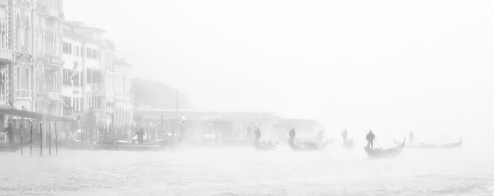Venezia in White