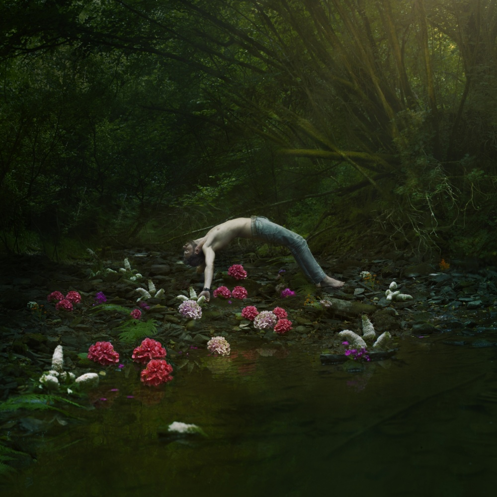 A piece of fine art art photography titled Where the Flowers Are by Matthijs Smilde