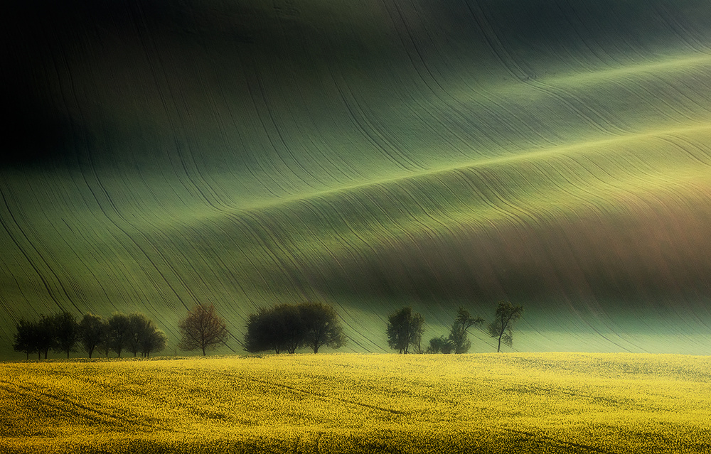 A piece of fine art art photography titled Spring Fields by Piotr Krol (Bax)