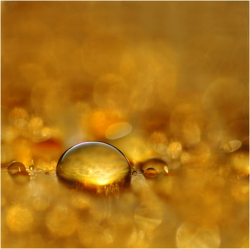 A piece of fine art art photography titled Goldfind by Elin Torger