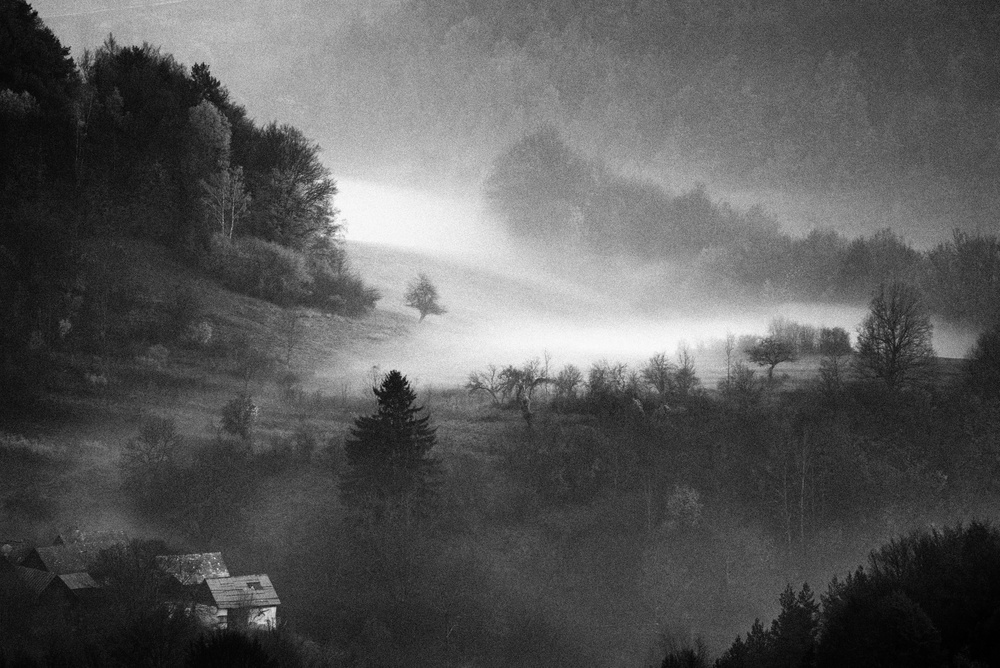 Mysterious dawn