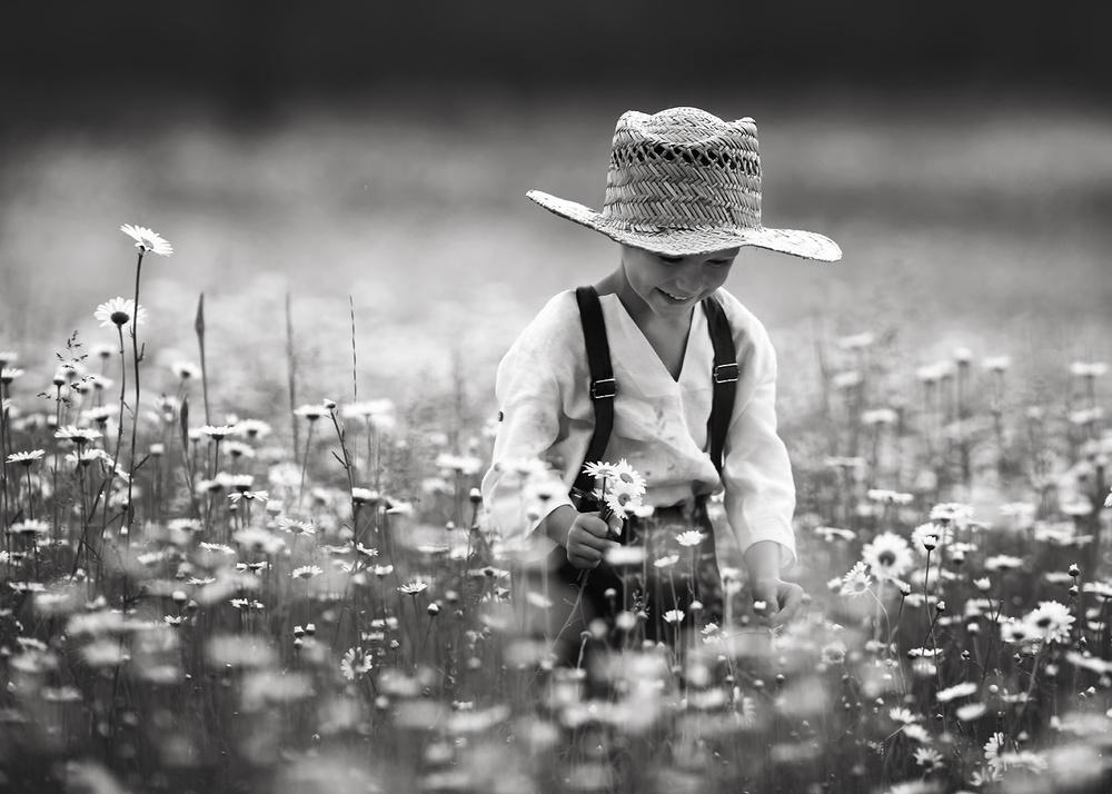 A piece of fine art art photography titled Joyful by Lisa Holloway