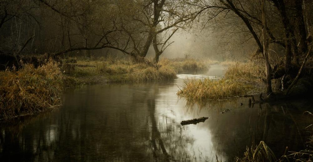 A piece of fine art art photography titled Autumn Morning by Norbert Maier