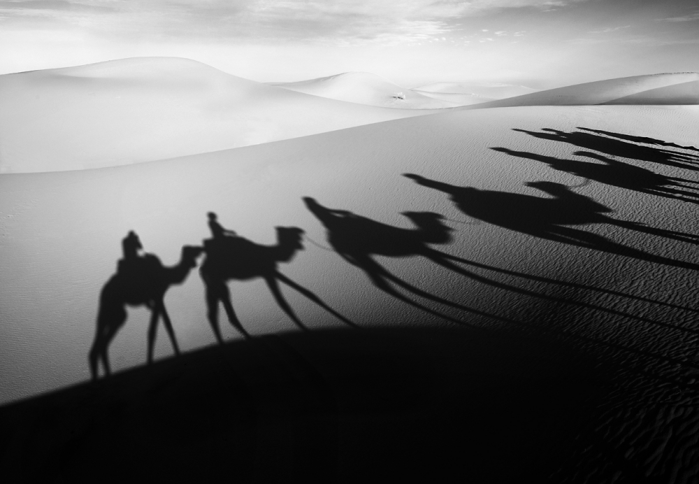 A piece of fine art art photography titled Desert Shadows by Norbert Becke