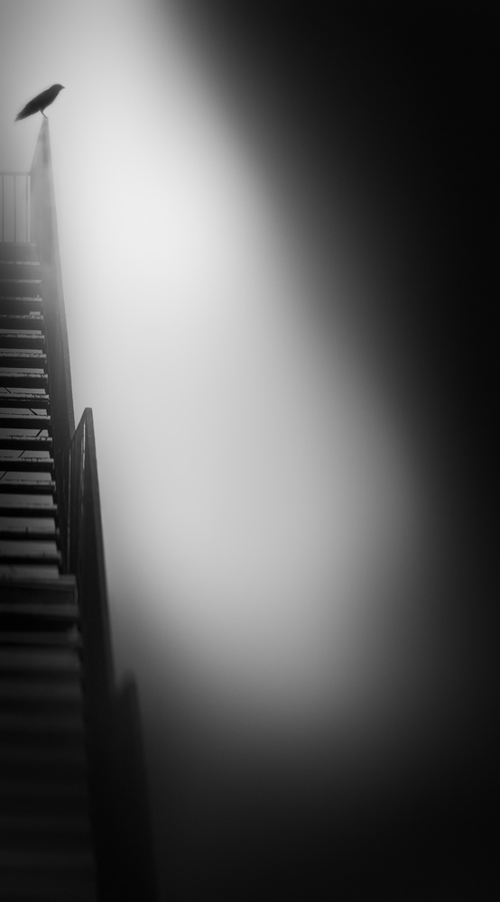 A piece of fine art art photography titled Stairway to Heaven by Nic Keller