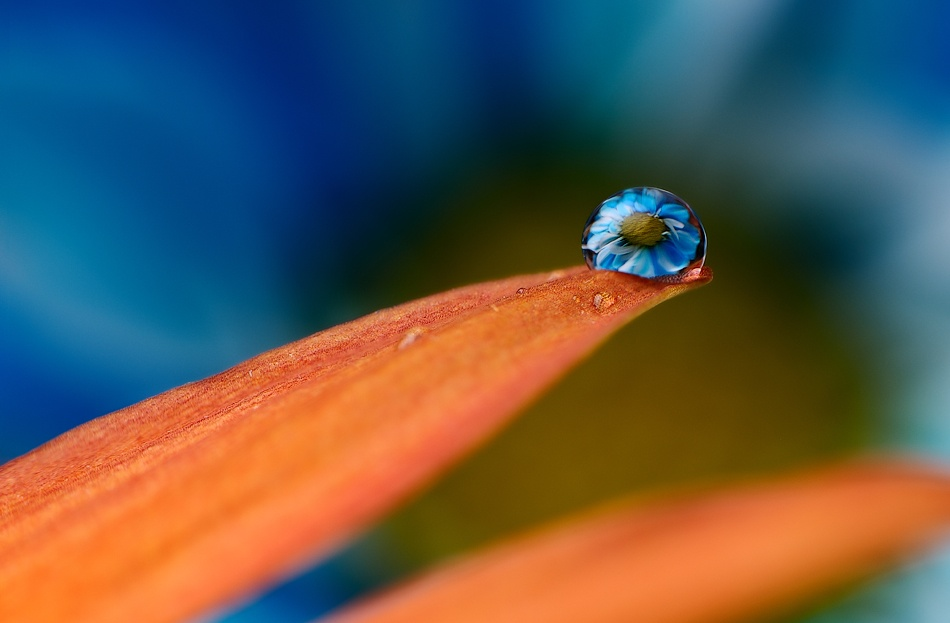A piece of fine art art photography titled Blue Drop by Mohammed Al-Furaih