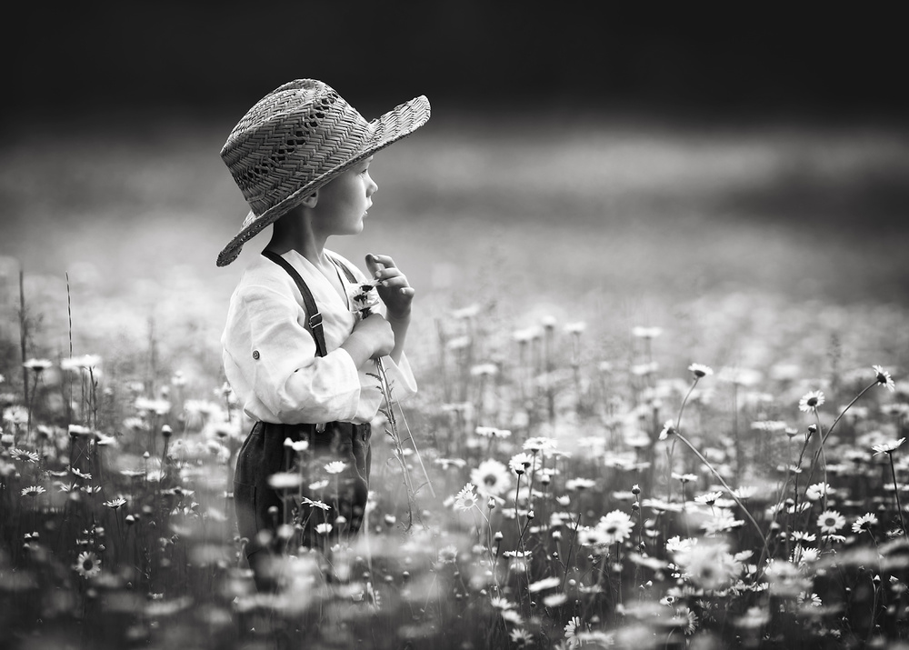 A piece of fine art art photography titled Childhood Dreams by Lisa Holloway