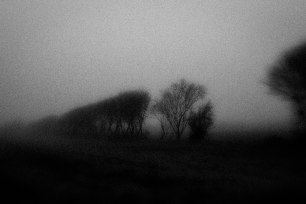 A piece of fine art art photography titled Early Morning 01 by Jørgen Feldstedt