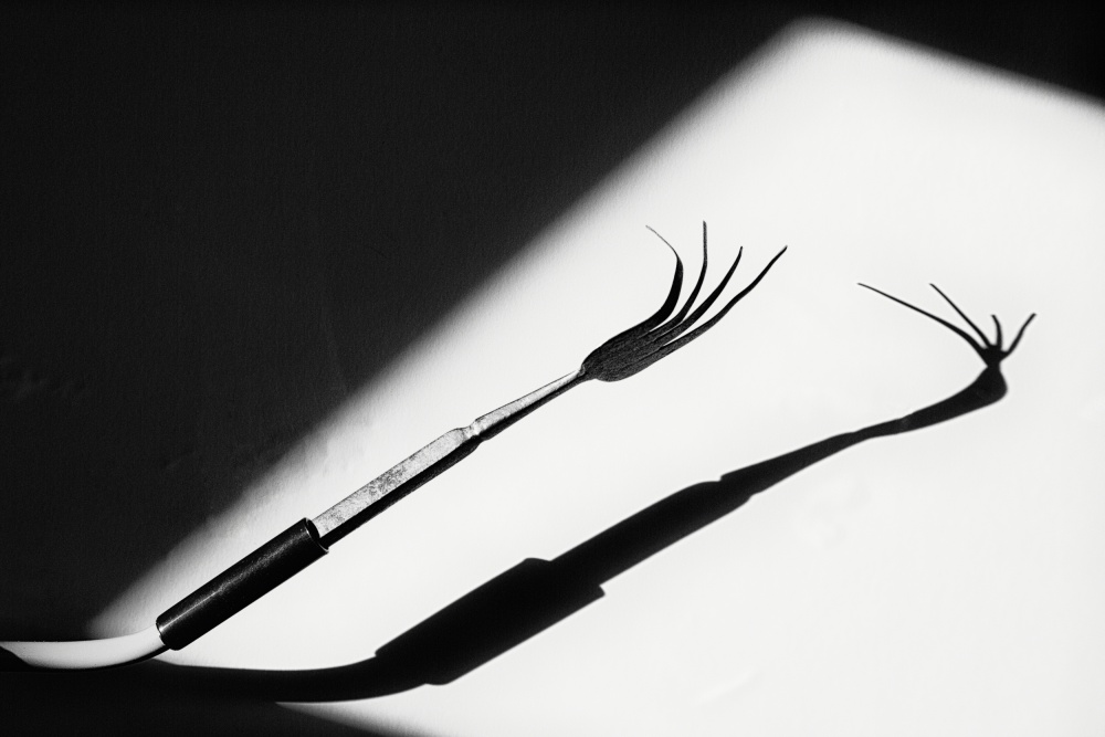 A piece of fine art art photography titled Different Shadow by Olavo Azevedo