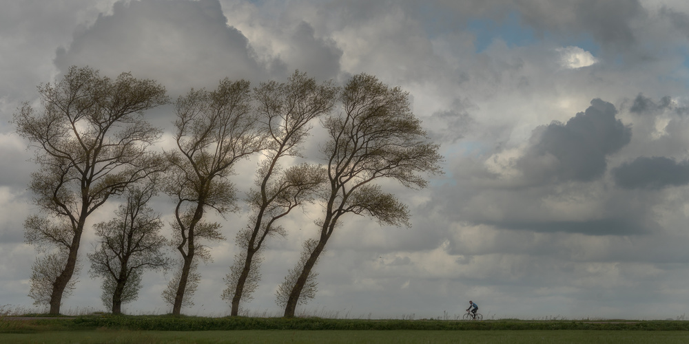 Against the wind...........