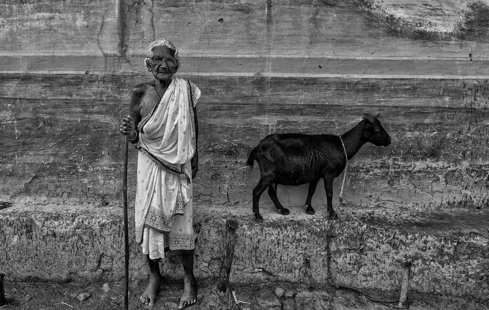 A piece of fine art art photography titled Lifecycle by Avishek Das