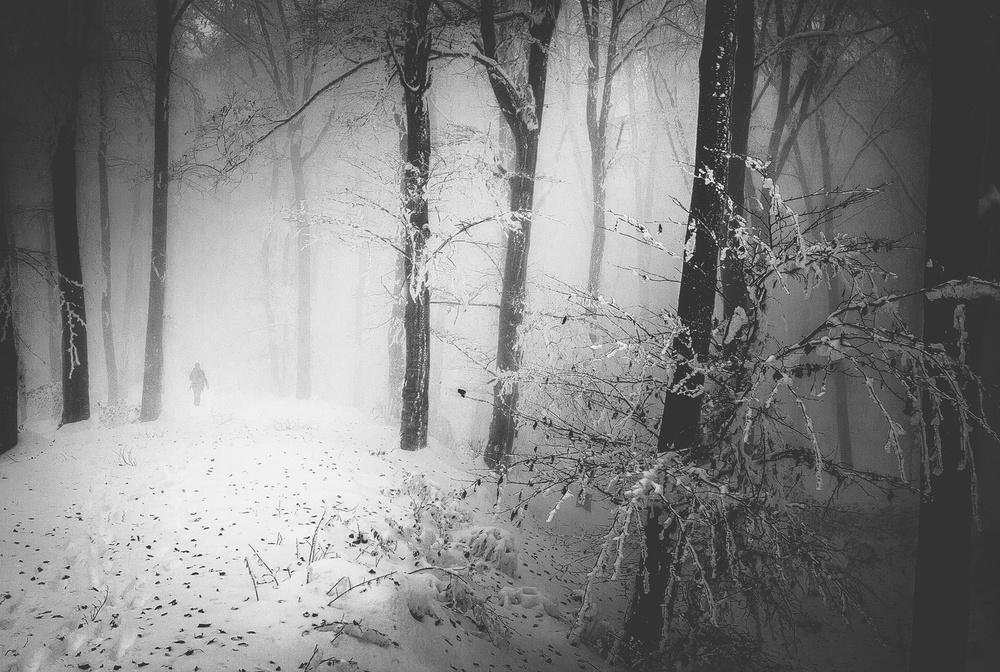 Memories Full Of Winter