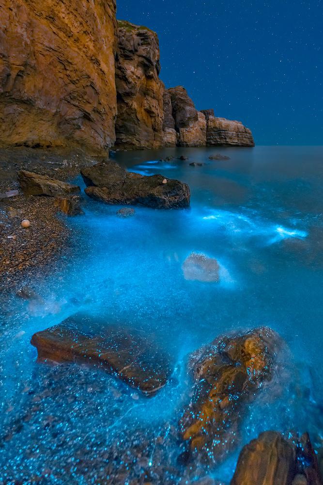 A piece of fine art art photography titled Bioluminescent Bay by Hua Zhu