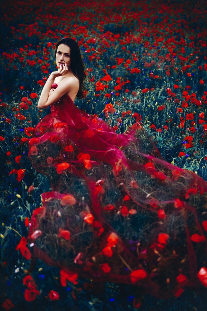 View this piece of fine art photography titled In the bed of Poppies by Ruslan Bolgov (Axe)