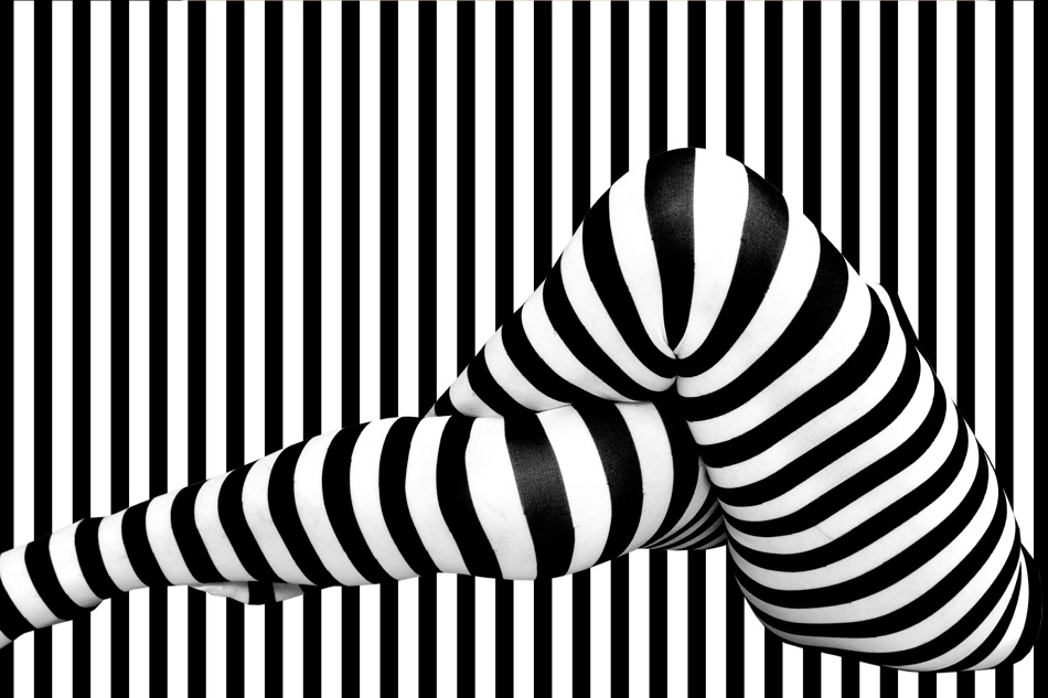 A piece of fine art art photography titled Living Stripes by Erhard Batzdorf