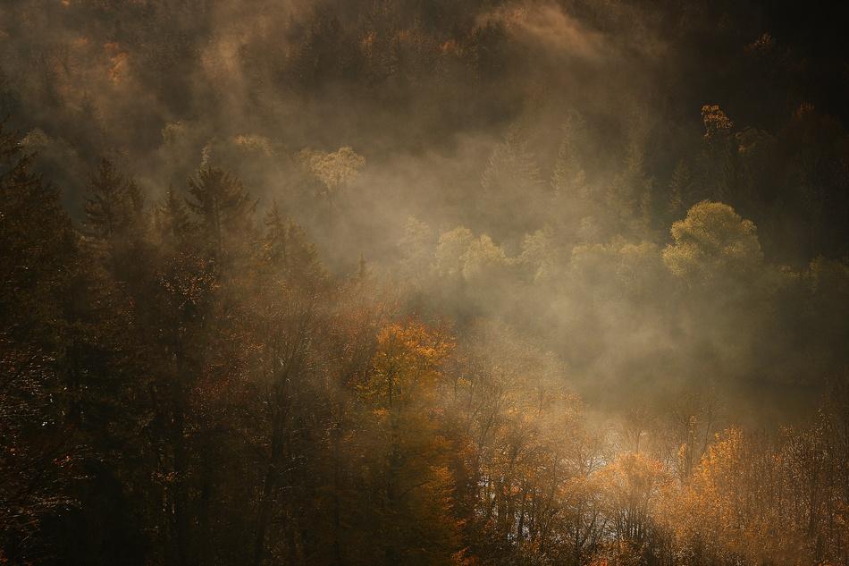 A piece of fine art art photography titled Morning Fog by Norbert Maier