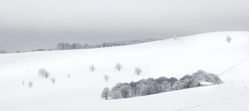 Paysage d'Aubrac en hiver