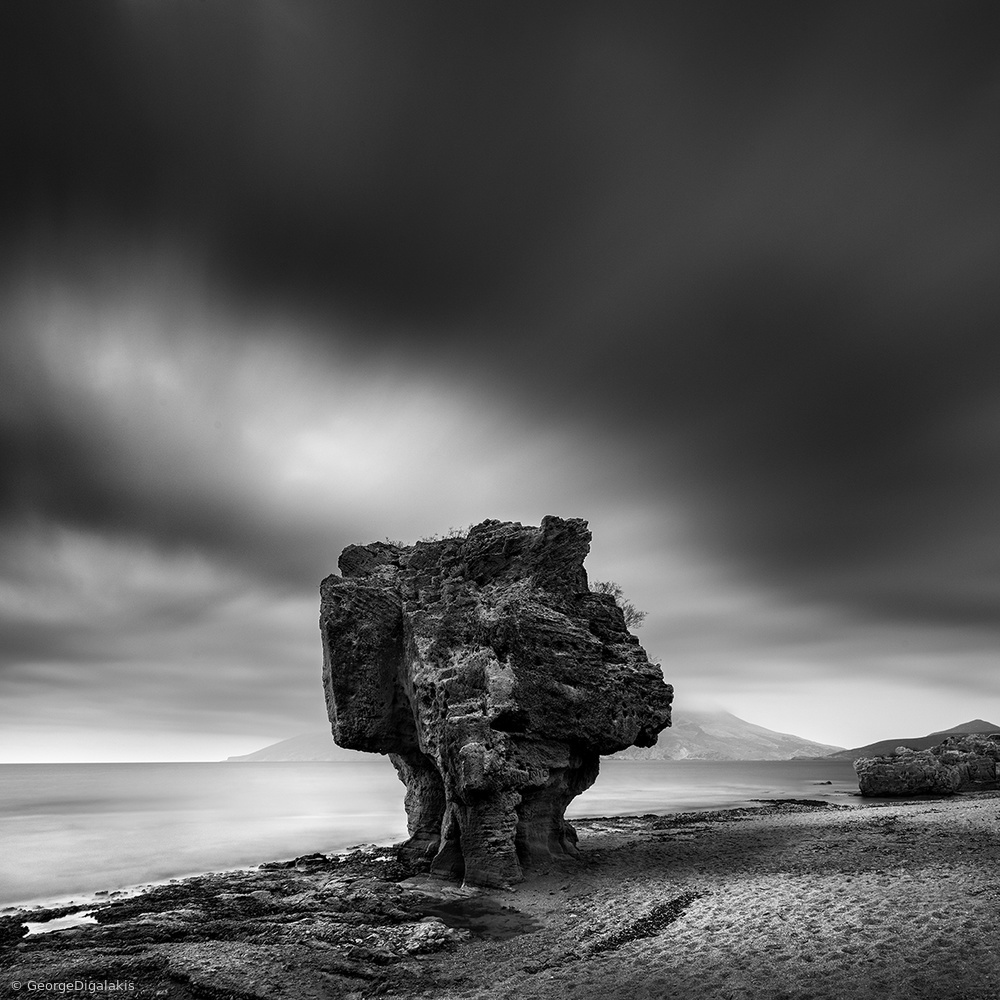 View this piece of fine art photography titled The Guard by Mario Vigo