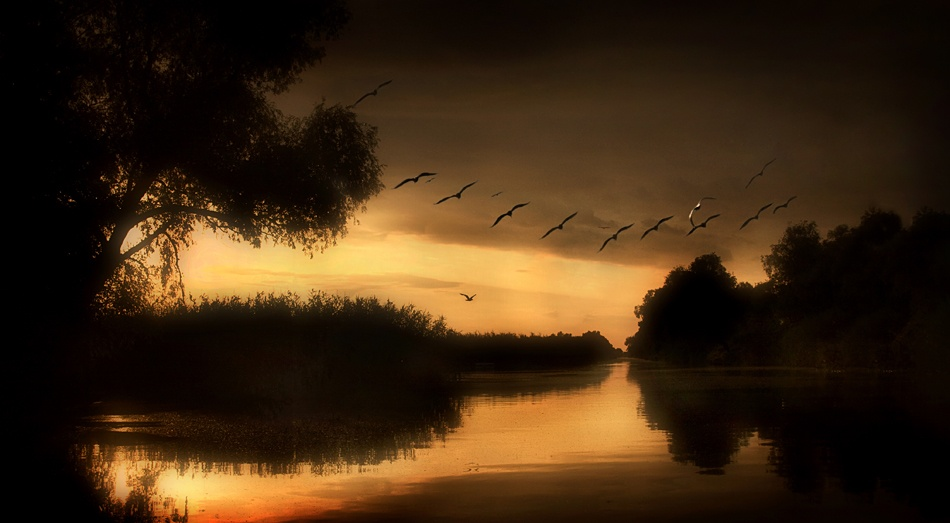 A piece of fine art art photography titled Danube Delta by Ileana Bosogea-Tudor