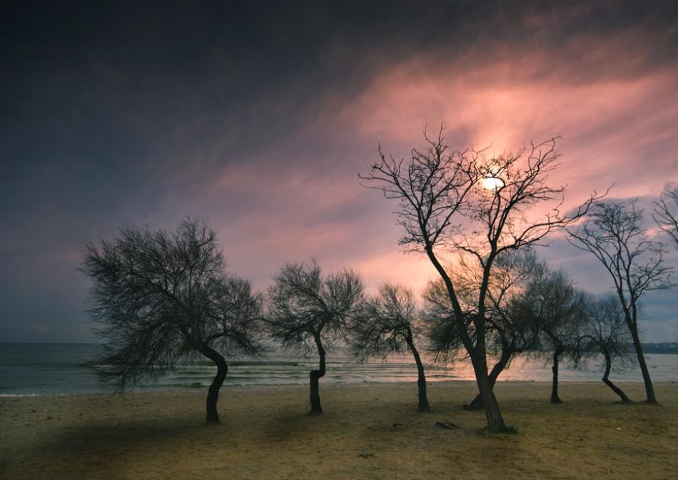 A piece of fine art art photography titled Winter Sun by mustafa yağcı
