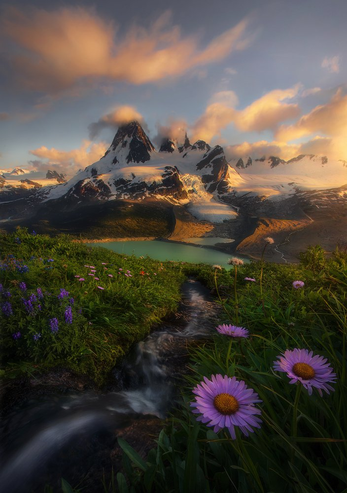 A piece of fine art art photography titled Field of Dreams by Marc Adamus