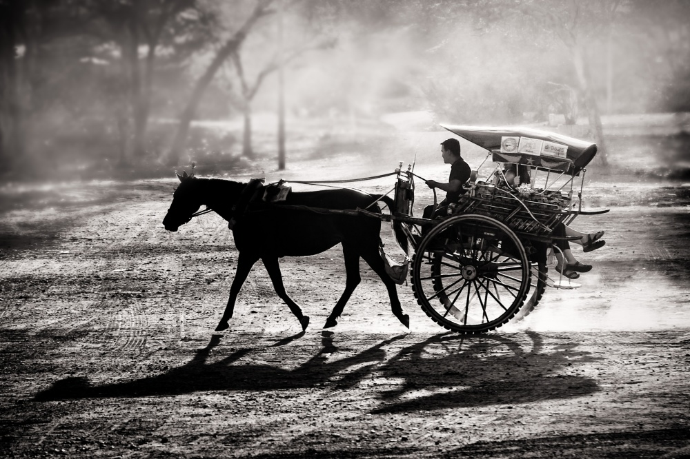 A piece of fine art art photography titled Dusty Horse Ride by Tom Baetsen - xlix.nl