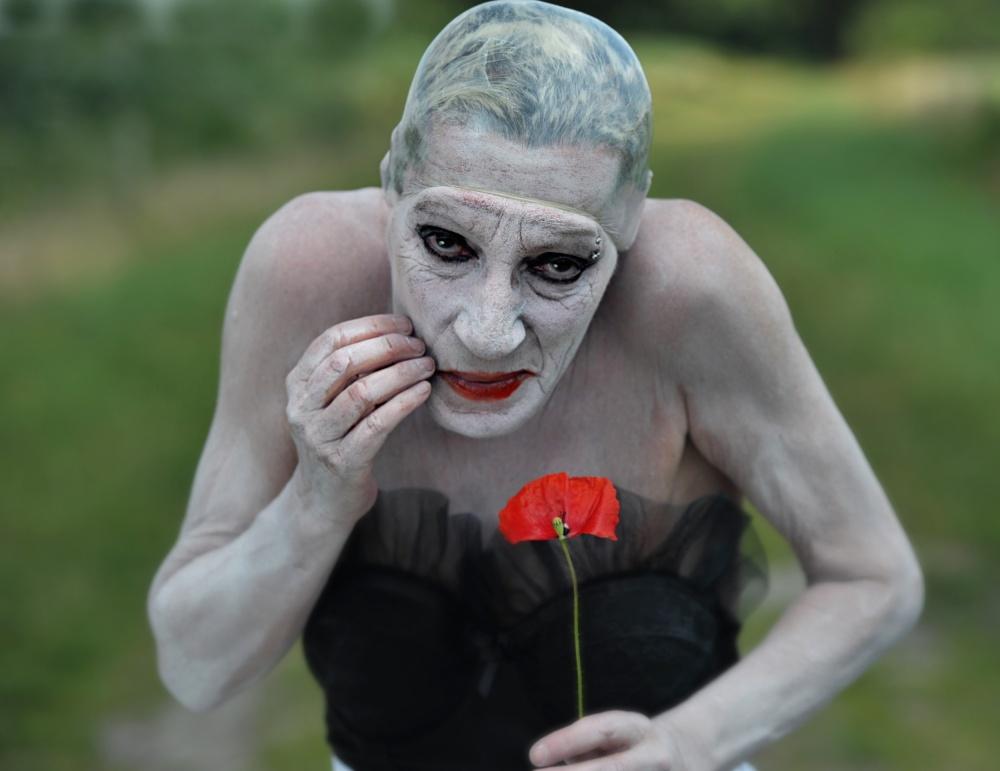 A piece of fine art art photography titled Red Flower by Monika Vanhercke