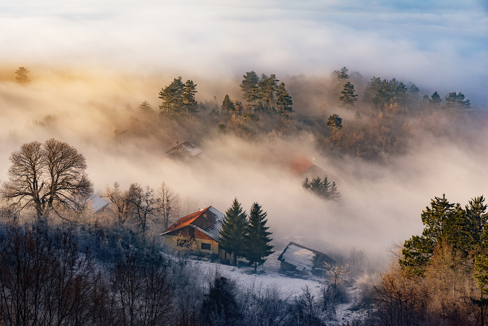 A piece of fine art art photography titled Misty Winter Days by Bez Dan