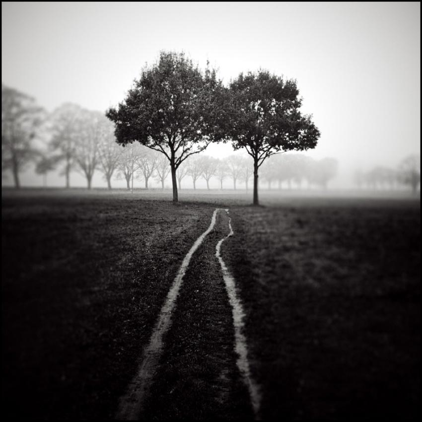 A piece of fine art art photography titled *i* by Michael Schlegel