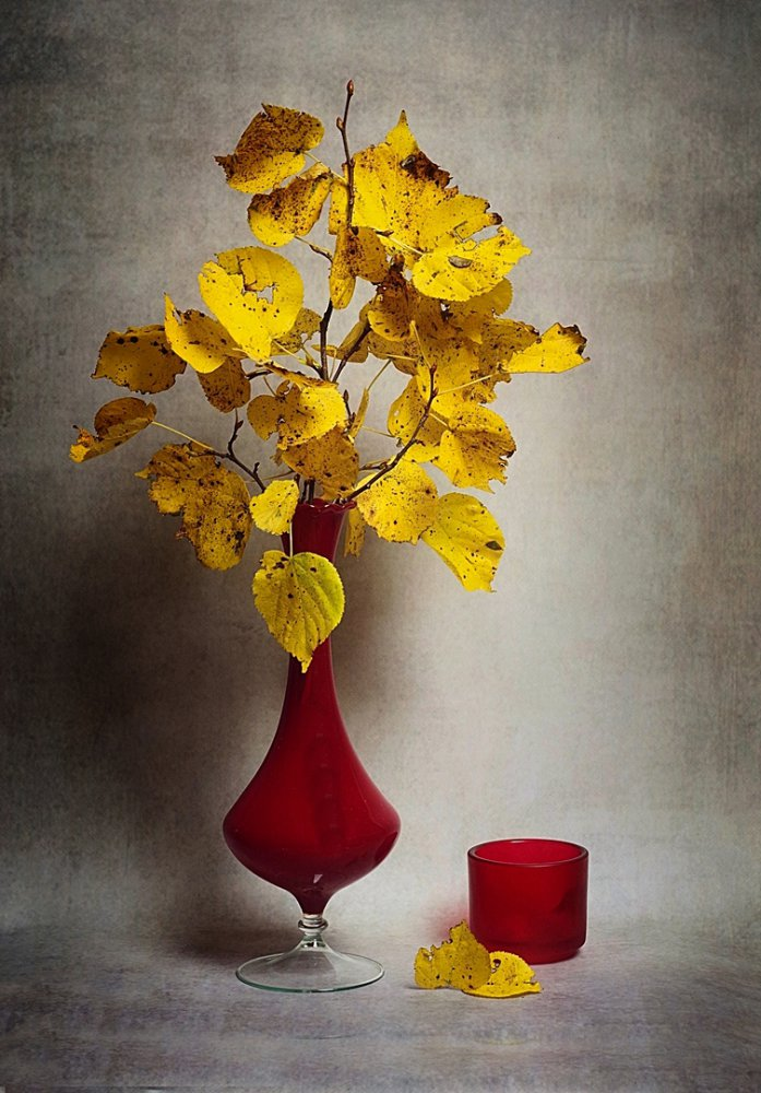 View this piece of fine art photography titled autumn by jorge pimenta
