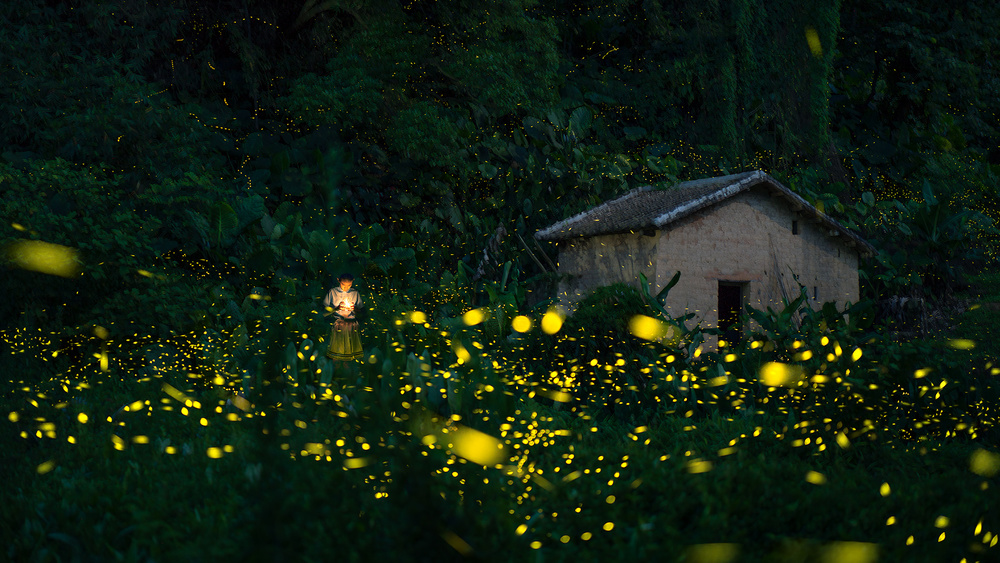 A piece of fine art art photography titled A Little Girl and Firefly by Hua Zhu