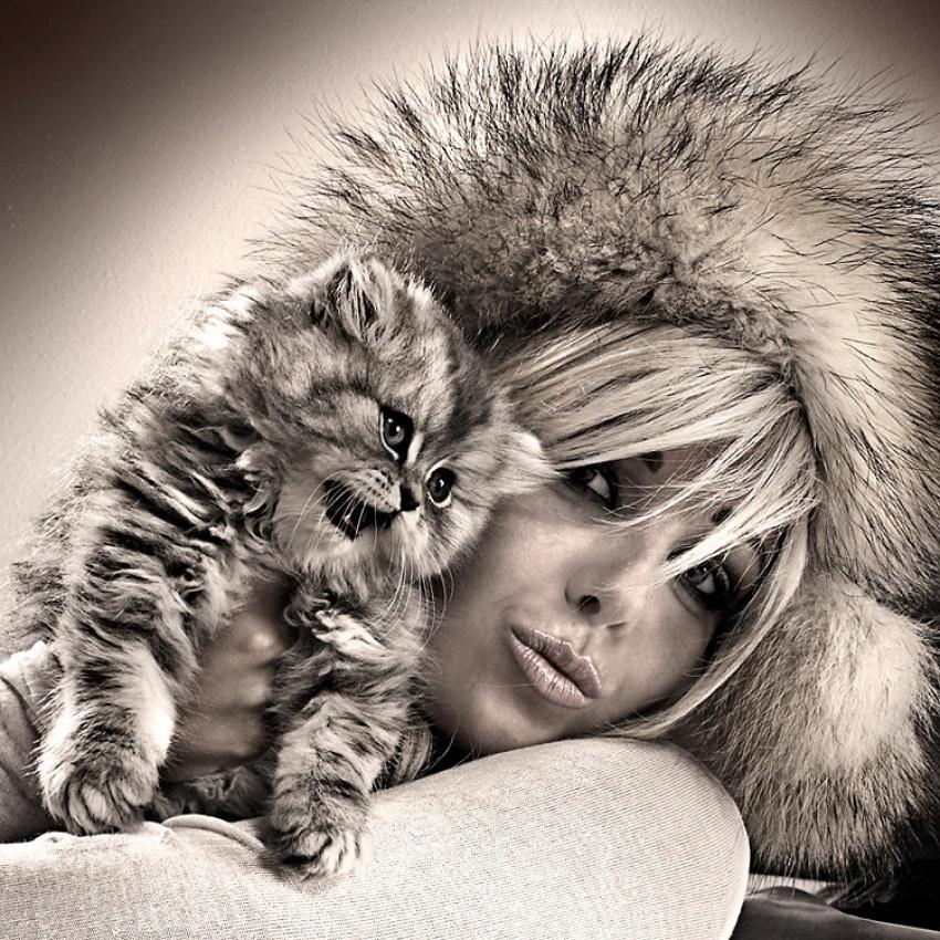 A piece of fine art art photography titled Kittens by Jo Graetz