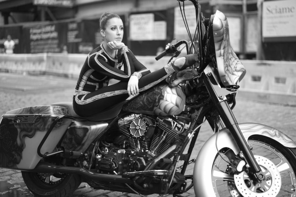 Harley Swan