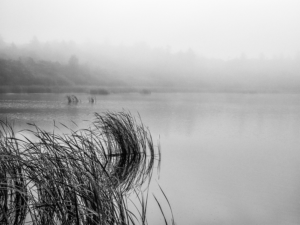 A piece of fine art art photography titled Lake Mood On a Foggy Day by Leif Løndal