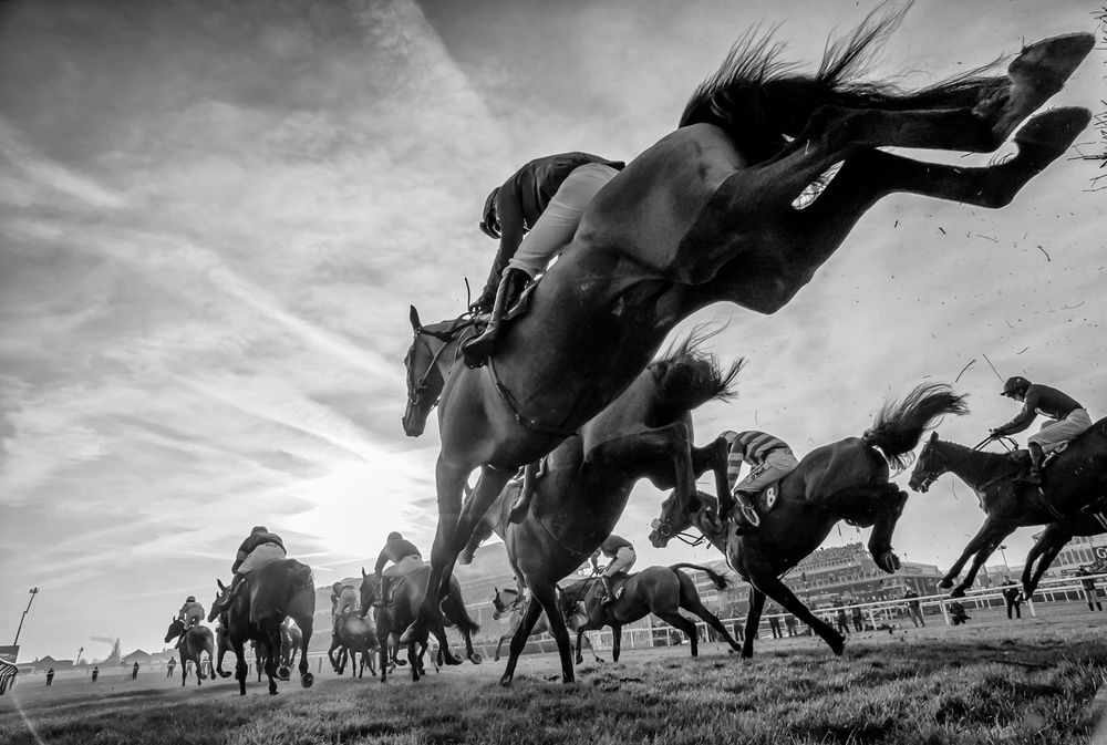 A piece of fine art art photography titled Cheltenham Jumps Festival by Sharon Lee Chapman